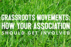 Grassroots Movements: How Your Association Should Get Involved