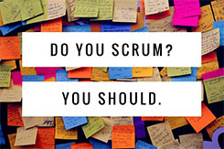 Scrum: Build Teamwork and Drive Results