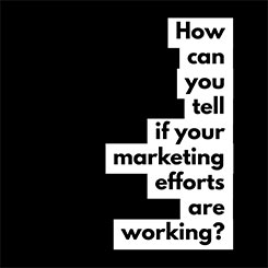 How Can You Tell if Your Marketing Efforts are Working?
