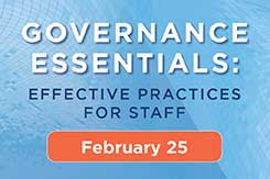Get the Essentials of Good Governance for Your Organization