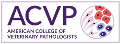 Welcome  ACVP, Our Newest Association Partner